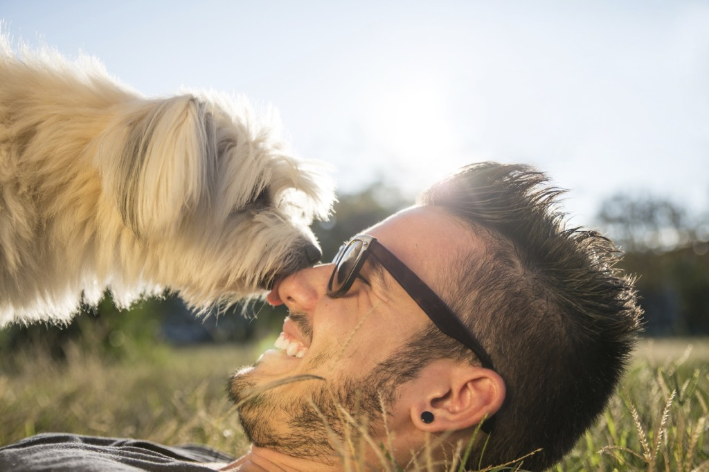 Cool Dog and Owner - iStock_000051318840_Medium