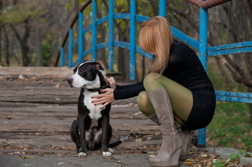 long-haired-blonde-woman-in-high-boots-stroking-dog-istock_000051754208_small