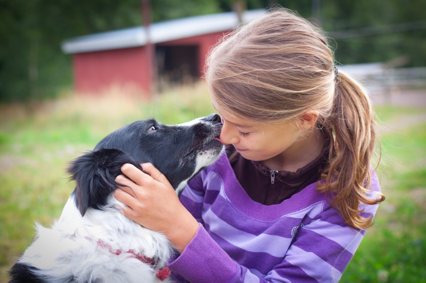 Teenage child with border collie