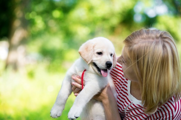 Pre-vaccination Puppy Home Visits all around Surrey